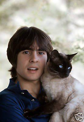 Who's cuter? Davy Jones circa 1969