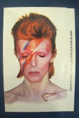 Original fan club subscription form found inside sleeve of Aladdin Sane