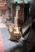 Brian's Beauty: The gold top's Gold Top.